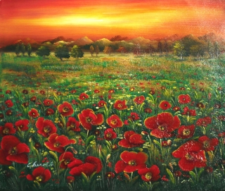AQ (Poppies with Sunset) *Landscape*